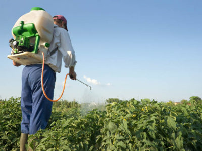 patentino fitosanitario